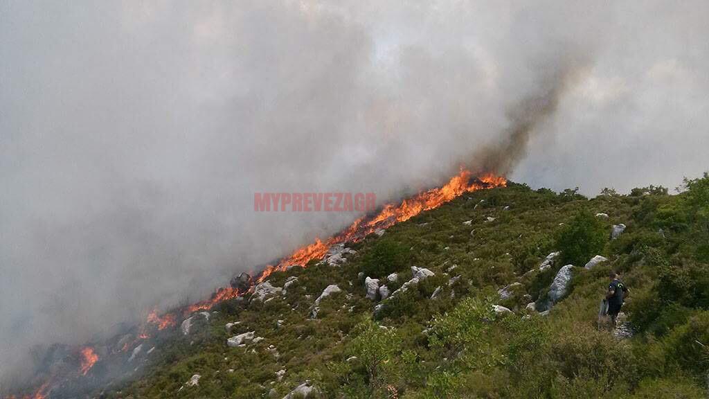 Θεσπρωτία: Μεγάλη φωτιά στον Αχέροντα – Προσπάθειες κατάσβεσης και με εναέρια μέσα