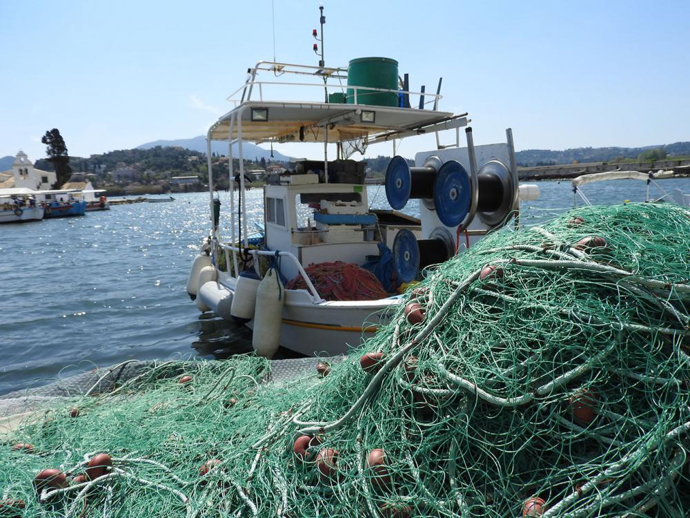 Πρέβεζα: Αιτήσεις για τη χορήγηση αδειών αλιείας τόνου, ξιφία και μακρύπτερου τόνου