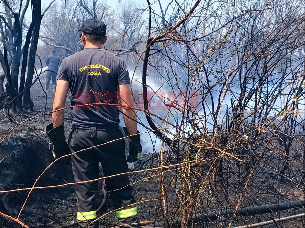 Πρέβεζα: Συνολικά 95 χιλιάδες ευρώ για την κάλυψη δράσεων πυροπροστασίας στους τρεις δήμους της Π.Ε Πρέβεζας