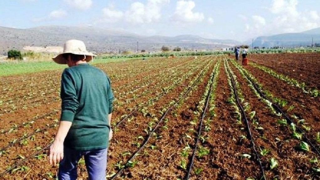 Πρέβεζα: Αποζημιώσεις ύψους 158.633 ευρώ από τον ΕΛ.Γ.Α. σε αγρότες και κτηνοτρόφους της Πρέβεζας
