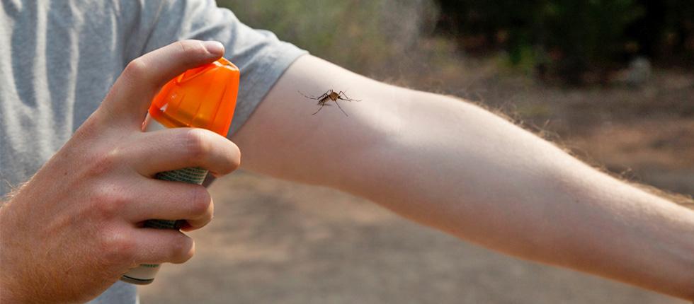Πρέβεζα: Μέτρα πρόληψης και προστασίας από τα κουνούπια