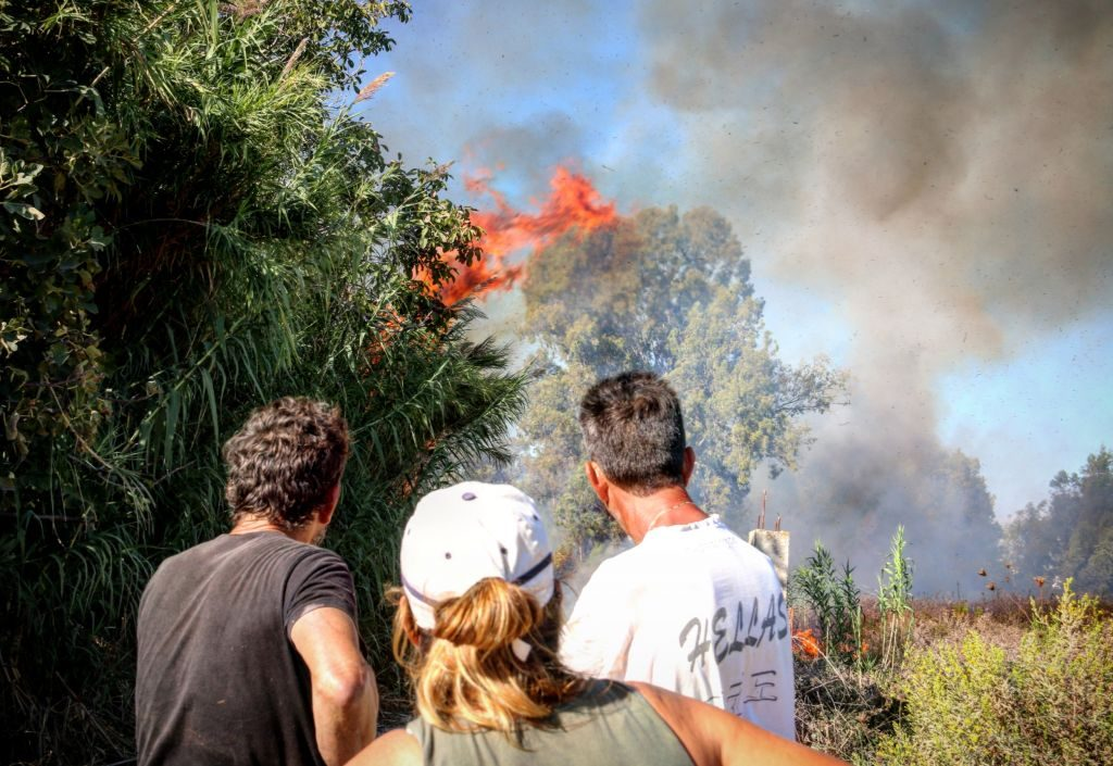 Πρέβεζα: Υπό μερικό έλεγχο η φωτιά στην περιοχή Παλιουρι στη ΒΙ.ΠΕ. Πρέβεζα